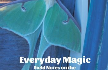 EverydayMagicCoverWEBVIEW