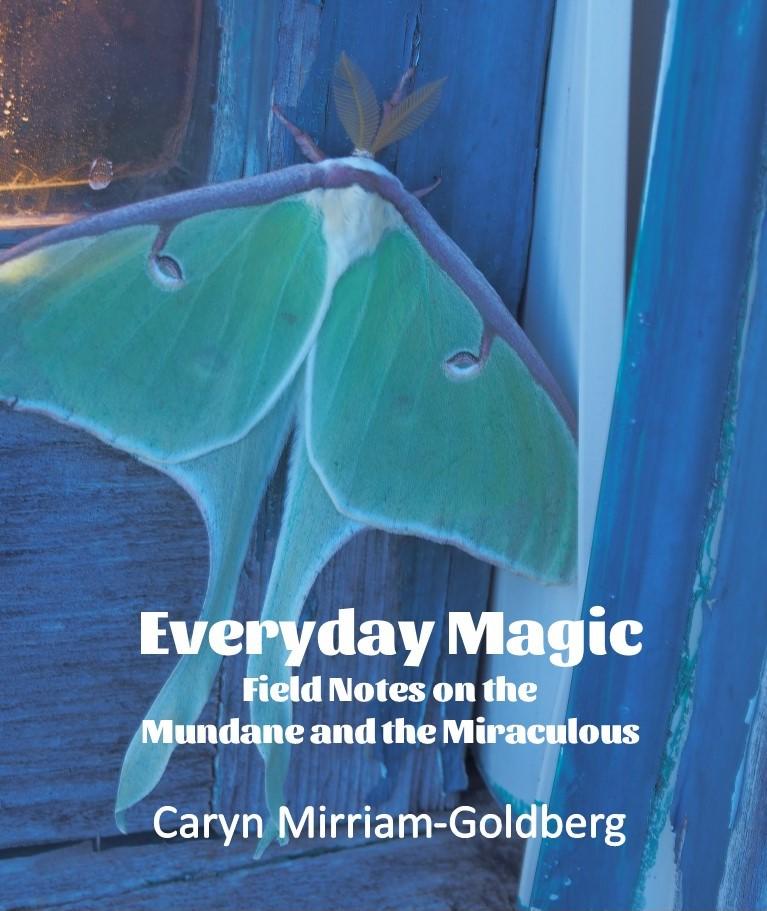 Everyday Magic - Caryn Mirriam-Goldberg